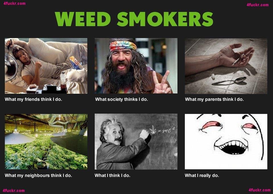 joe rogan  Tumblr  Snark  Pinterest  Cannabis Funny